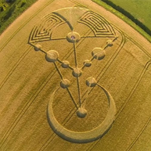 2014 UK Crop Circle - Dorset England UK - from Patty Greer Films