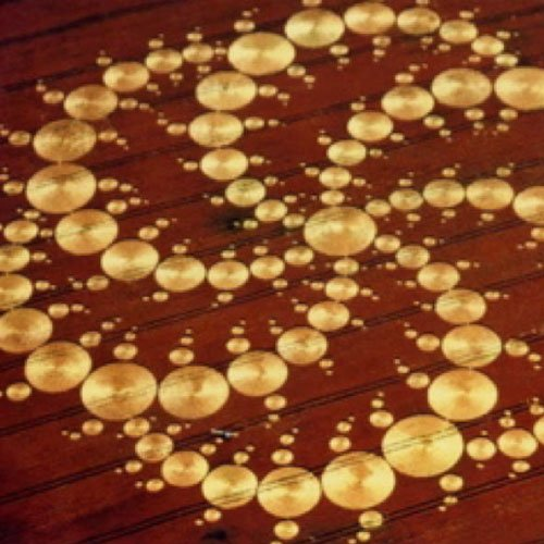 409 circles Crop Circle - Wiltshire England UK - from Patty Greer Films