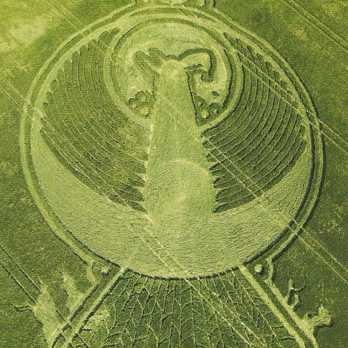 Rising Phoenix Crop Circle, Wiltshire England UK- from Patty Greer Films