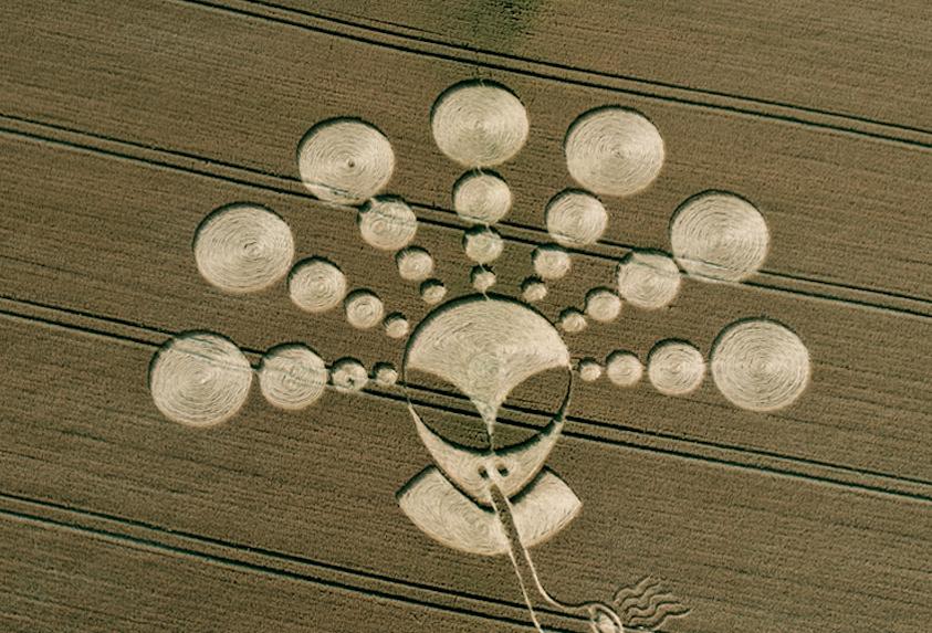 alien crop circles 2017 - photo #39